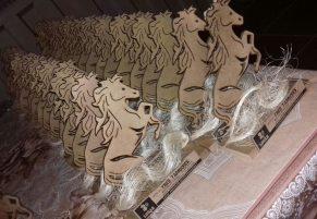 000-exclusive-cia-trofeu-madeira-para-competicoes-em-caval-d_nq_np_398505-mlb25042399106_092016-f